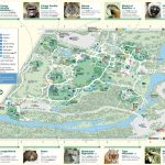 Bronx Zoo   Maplets With Regard To Bronx Zoo Map Printable